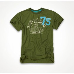 ФУТБОЛКА SURPLUS SPARTANS TEE OLIVE/ОЛИВКОВАЯ